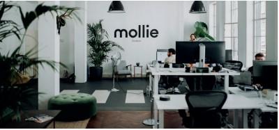 mollie-sdim